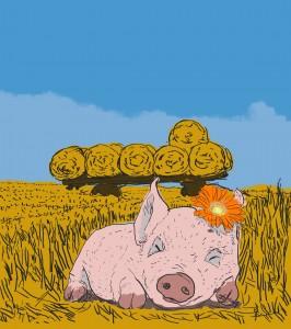Piglet in the hay