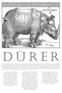 Dürers Rhinocerus – ein Poster